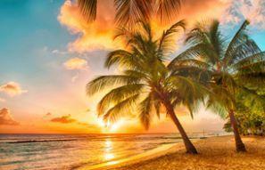 Bílaleiga Barbados