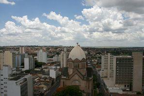 Bílaleiga Araraquara, Brasílía