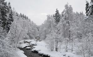 Bílaleiga Nurmijarvi, Finnland